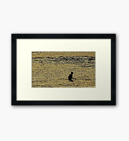 Golden Diver Framed Print