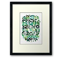 Geotypes Framed Print