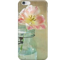 Pink and Yellow Tulip in Vintage Blue Jar iPhone Case/Skin