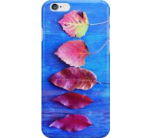 Autumn Leaves on Blue Vintage Table iPhone Case/Skin