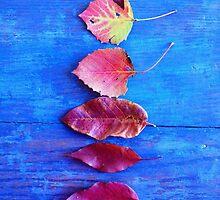 Autumn Leaves on Blue Vintage Table by Olivia Joy StClaire