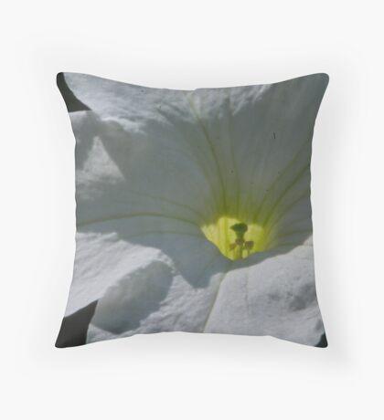 Inside Throw Pillow