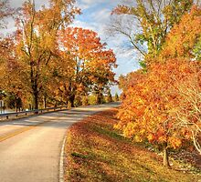 Fall in Tennessee by LarryB007