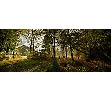 Preston Park, Stockton on Tees Photographic Print