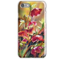 Backlit Hellebores iPhone Case/Skin