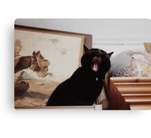 A ball of yawn Canvas Print