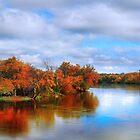 Reflections of Fall by Nadya Johnson