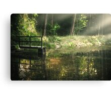 Calm forest Canvas Print
