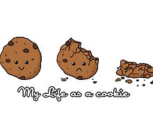 My life as a cookie by CoyoDesign