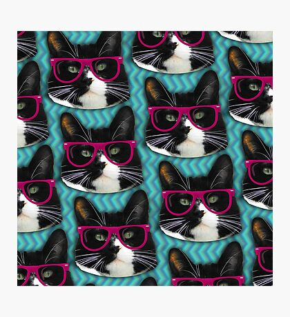 Hipster Glasses Kitty Pattern  Photographic Print