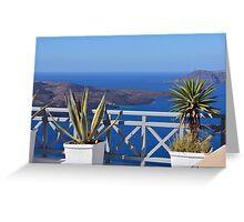Plants in flower pots in Santorini, Greece Greeting Card