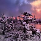 The Last Big Snow by Charles & Patricia   Harkins ~ Picture Oregon