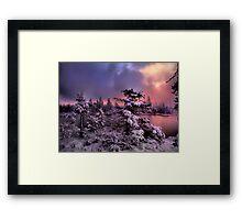 The Last Big Snow Framed Print