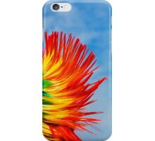 Brighton Pride - Rainbow Mohican iPhone Case/Skin
