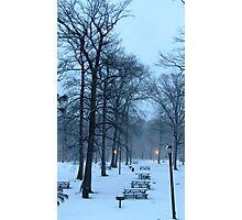 Snowy picnic at Pelham Bay Park Photographic Print