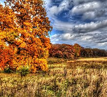 Autumn on the Prairie by Roger Passman