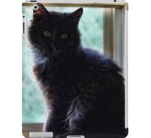 Window Watcher iPad Case/Skin