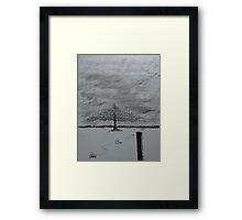 Survey Post Framed Print
