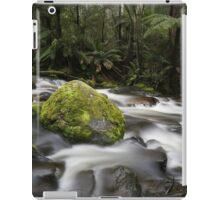 Toorongo Creek iPad Case/Skin
