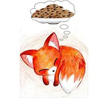 Red fox needs cookies Photographic Print