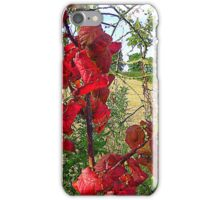 Red Leaves And Stubble iPhone Case/Skin