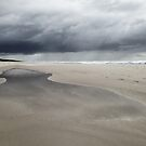 Casuarina Beach 1604 by Michael Kienhuis