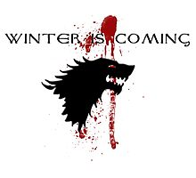 Winter is Coming House Stark Photographic Print