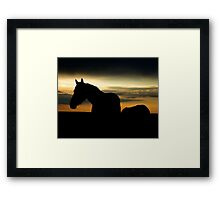 Silhouette of Wild Horse Mare - 40515 Framed Print