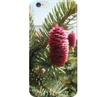 pink pine cone  iPhone Case/Skin