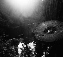 Morning Web by AmishElectricCo
