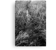 Cloudy Water Canvas Print