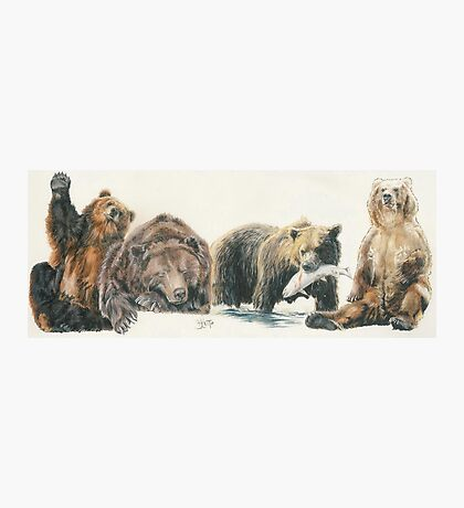 North American Grizzly Bear Photographic Print