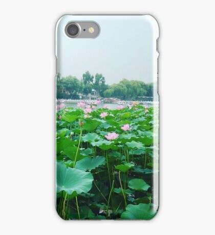 Lily Pads Blooming in Bejing, China iPhone Case/Skin