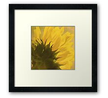 The Chef's Delight Framed Print