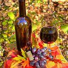 Autumn Wine by Jimmy Ostgard