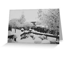Winter In The Garden  Greeting Card