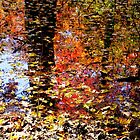 Autumn Reflections in Abstract by Jimmy Ostgard