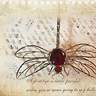Goggo/Insect range - Scarlet Dragonfly by Maree  Clarkson