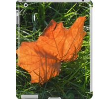 Backlit Autumn Leaf iPad Case/Skin