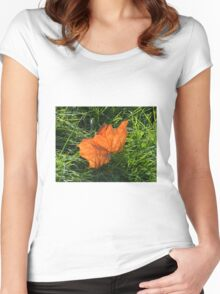 Backlit Autumn Leaf Women's Fitted Scoop T-Shirt