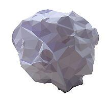 Polygon Paper Meteorite Photographic Print