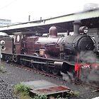 Steam Engine 3265 @ Central Station, Sydney, Australia by muz2142