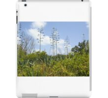 In the Think of the River of Grass iPad Case/Skin