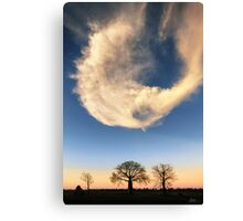 A Kimberley Skyscape Canvas Print
