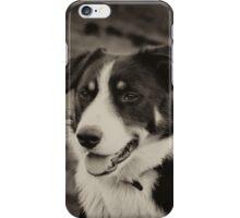 The world's friendliest sheep dog iPhone Case/Skin