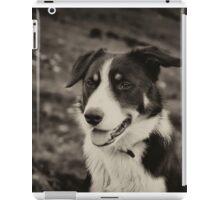 The world's friendliest sheep dog iPad Case/Skin