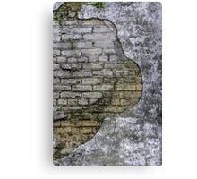 Revealed Brick Wall - Phone Cases, Pillows, Prints and More Canvas Print