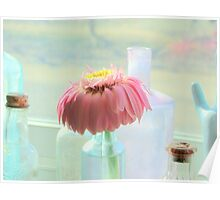 Little Droopy Gerbera Poster