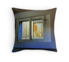 Through The Basement Window Throw Pillow