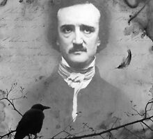 NEVERMORE by Elizabeth Burton